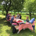 Bourgondische picknick op boerderij Hoefwoning