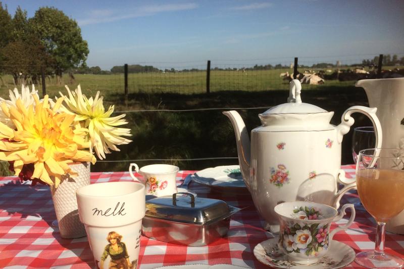 Picknicktafel Hoefwoning Maasland